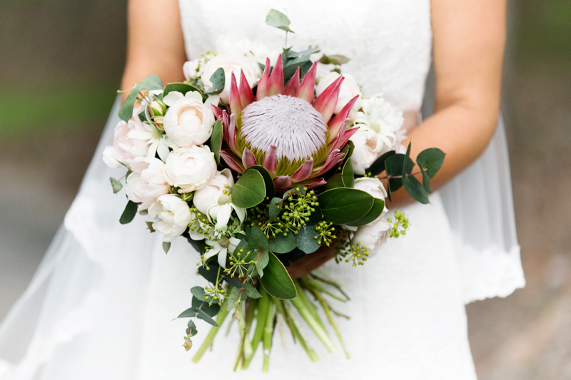 Native inspired design featuring a King protea, David Austin roses, double tulips, flannel flower and nutty gum.