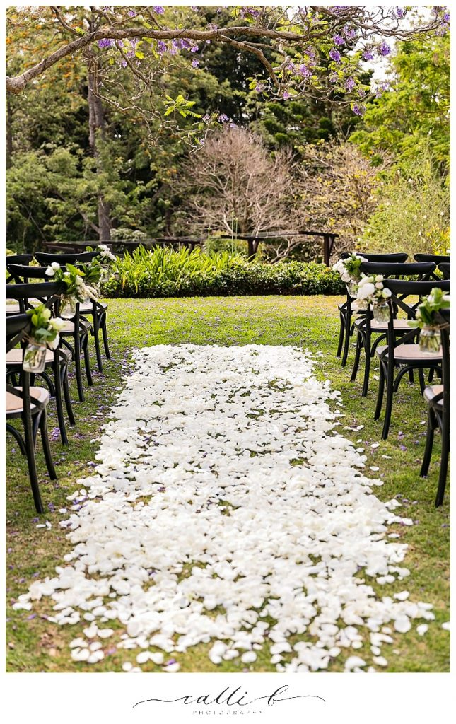 white rose petal path