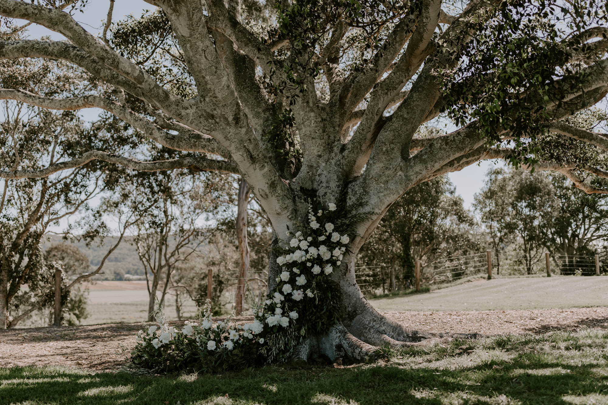 Ceremony tree garland featuring white blooms