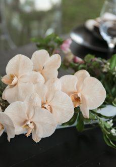 Sunshine Coast Hinterland wedding flowers