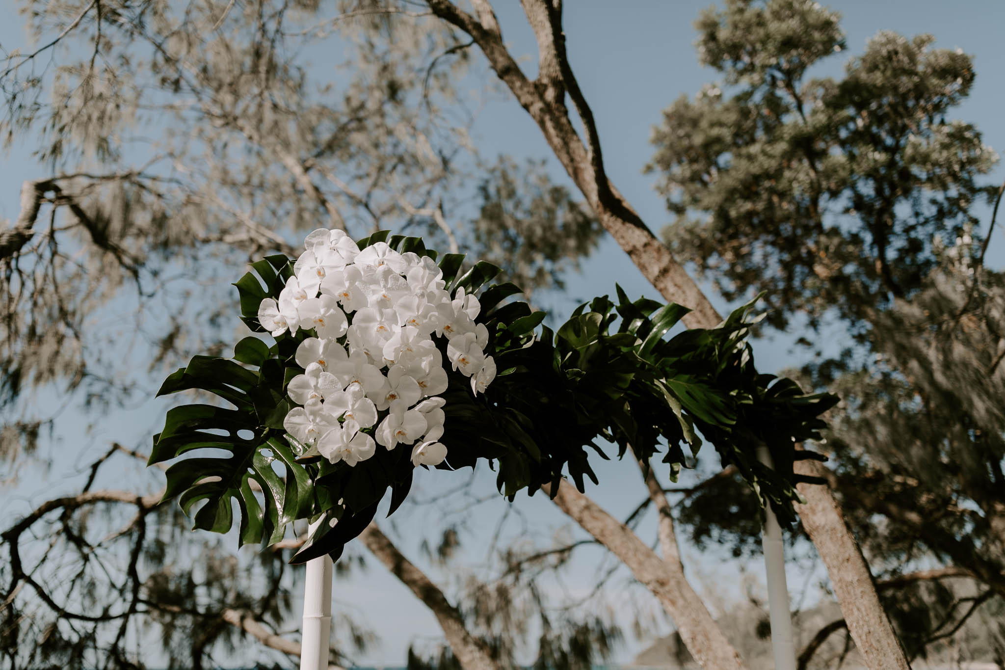 Ceremony arbour featuring orchids and tropical leaves