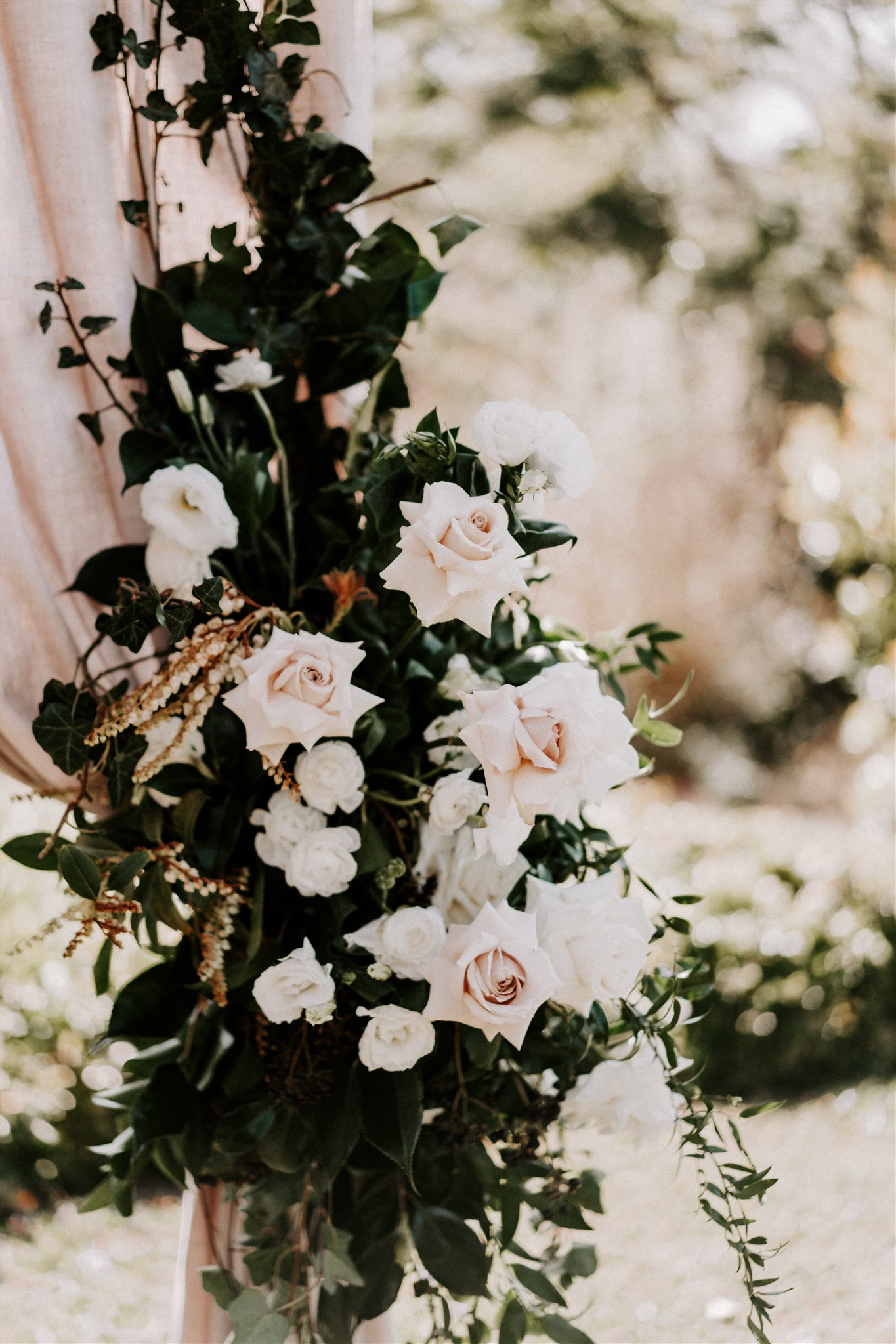 Spicers Clovelly Estate Wedding with Jacaranda Tree