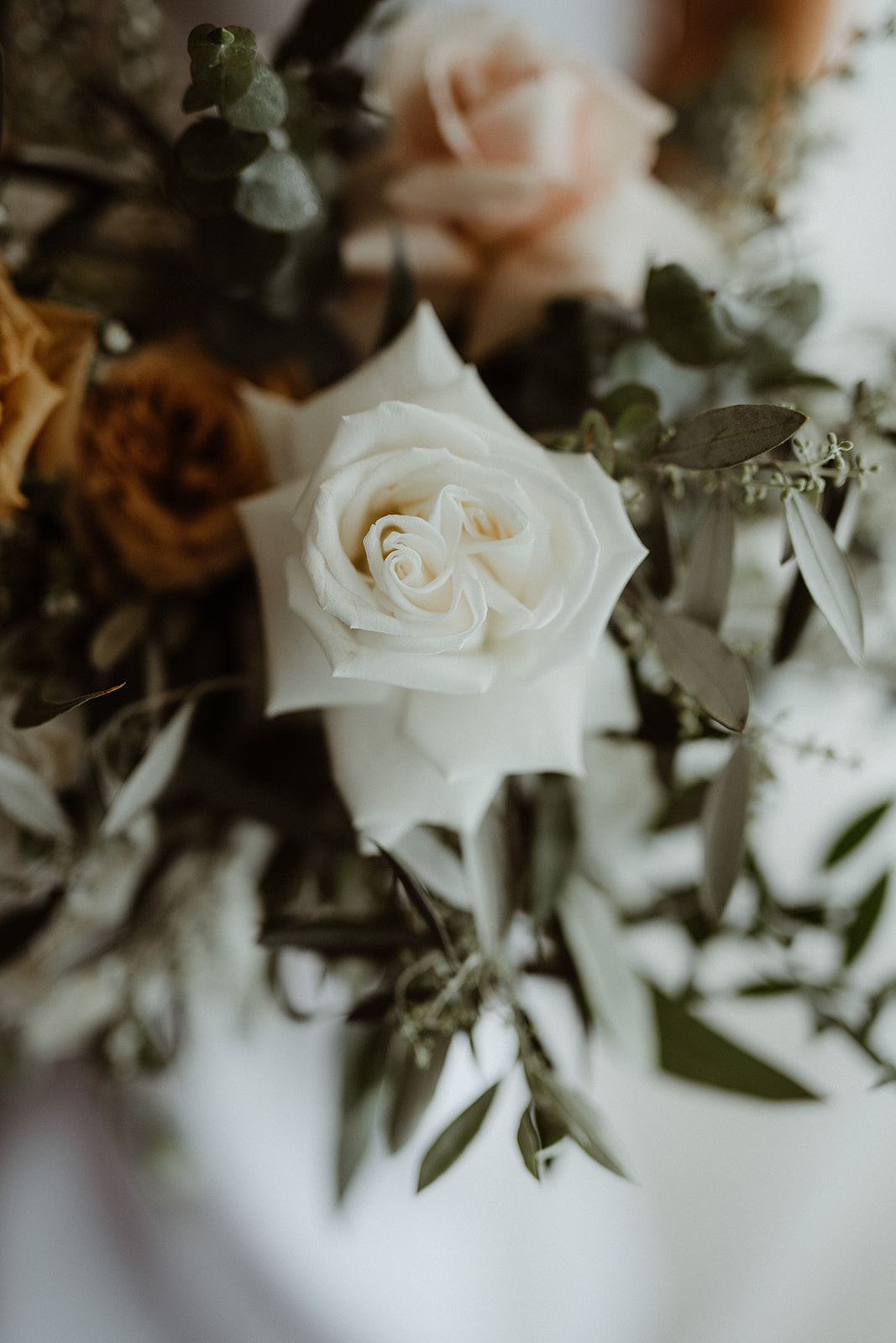 White with a hint of toffee bouquet