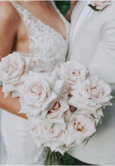 Quicksand & Playa Blanca Roses