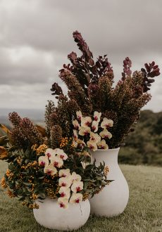 New Season Florals Styled Shoot at Maleny Manor