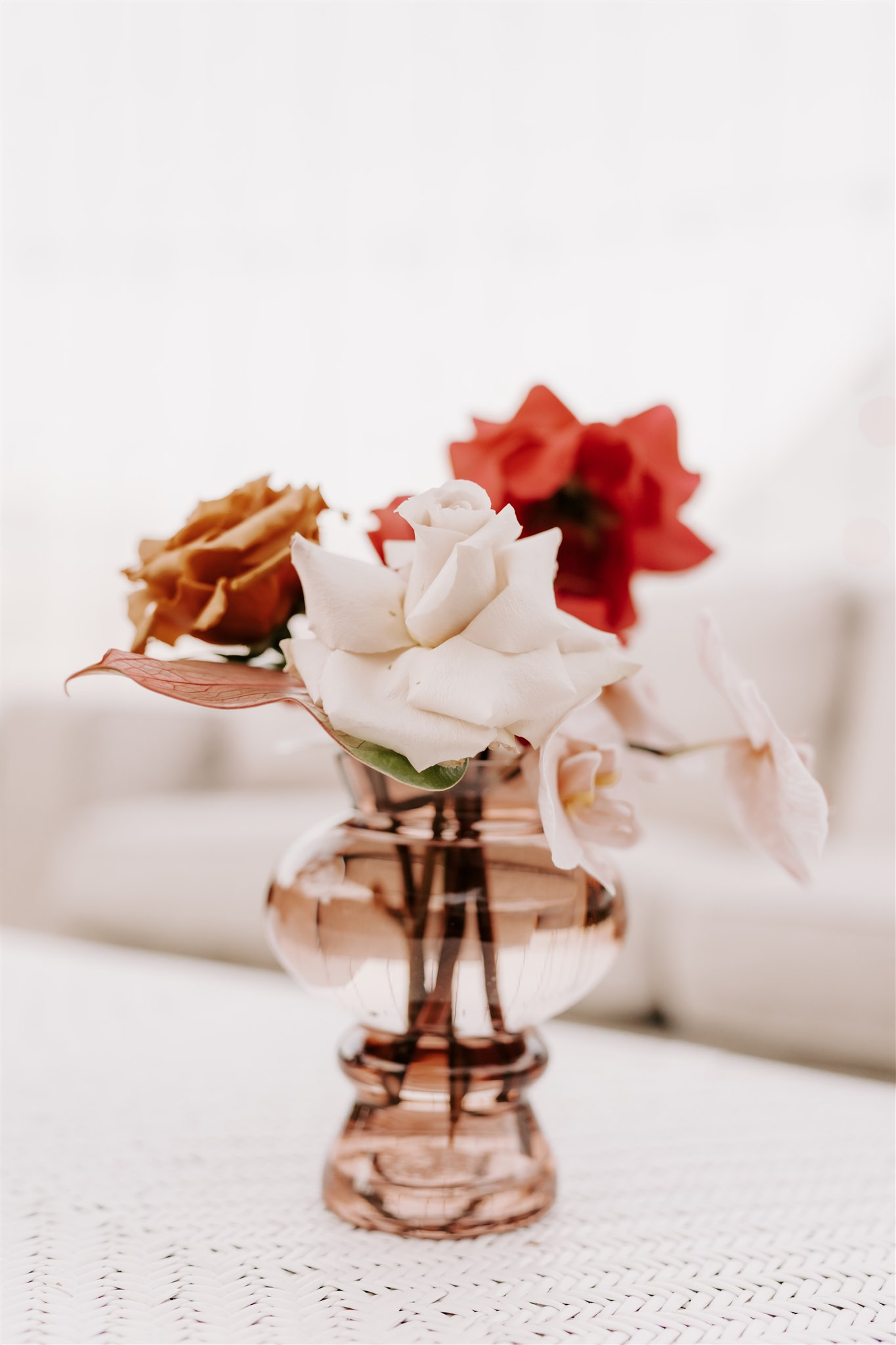 Quicksand Roses, Toffee Roses and Orchids