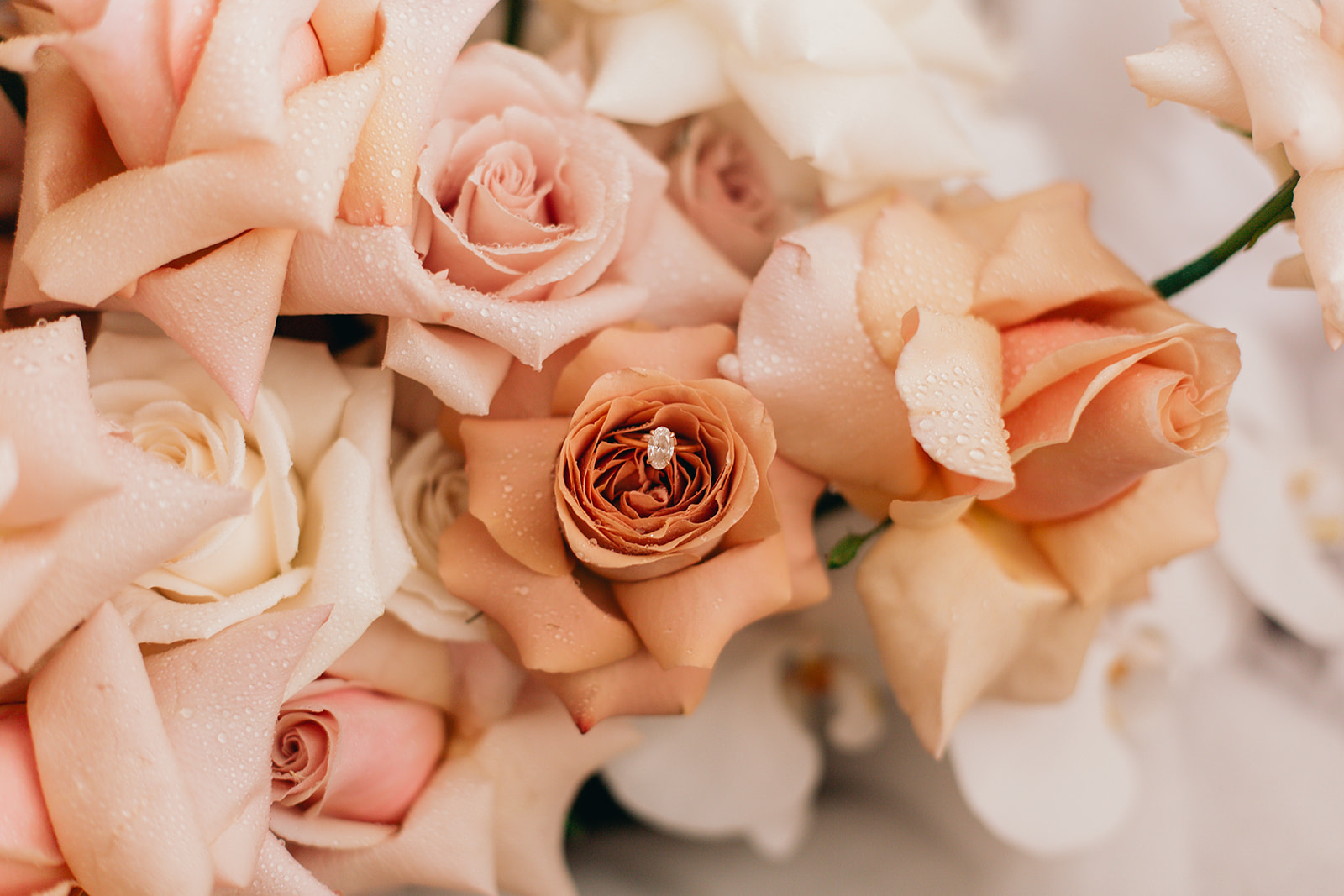 Cream muted pink earthy toned flowers