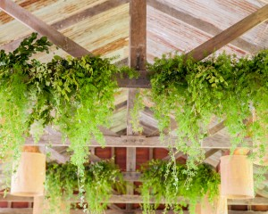 Hanging greenery features
