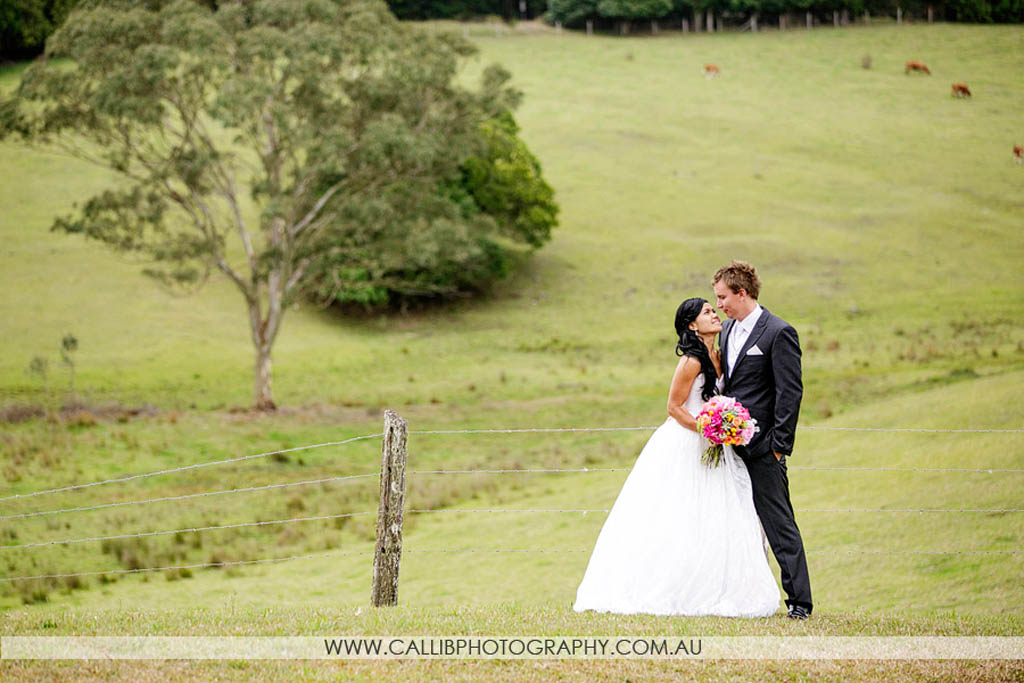 Rose Mae And Andrew, House Of Laurels Maleny Wedding