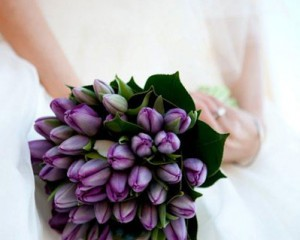 Formal posy bouquet of deep purple tulips and a circlet of camellia foliage - Image by Focus Films