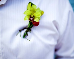 Green Singapore Orchid buttonhole with a touch of red Chili and dodder vine