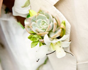 Calli B Photography – Buttonhole with succulent and Singapore Orchid