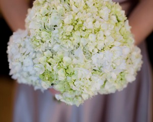 Hydrangea posy with green accents